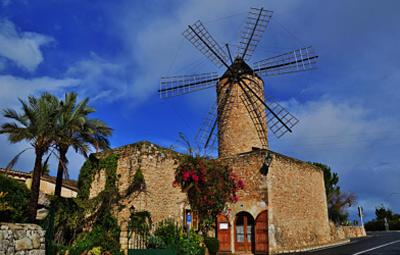 El Entorno - Mallorca
